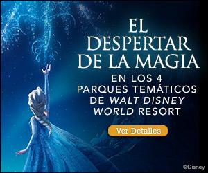 EL DESPERTAR DE LA MAGIA